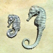 Silver Plated Seahorses